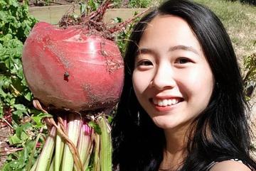 Vợ chồng Việt ở Úc trồng toàn cây trái khổng lồ trên mảnh đất khô cằn