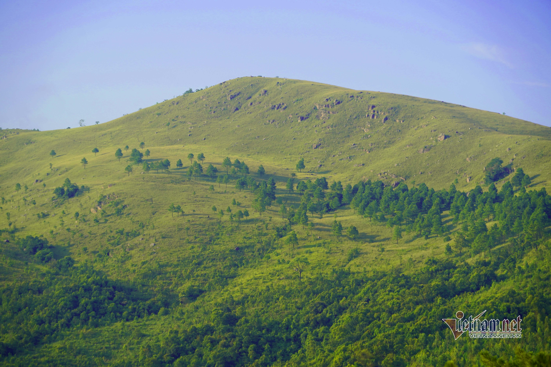 Mê mẩn vùng thảo nguyên hoang sơ được ví như 'Đà Lạt ở Quảng Ninh'