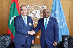 Vietnam always backs UN's central role: President