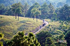 """Falling in love with the wild beauty of """"Phoenix"""" Hill in Quang Ninh"""