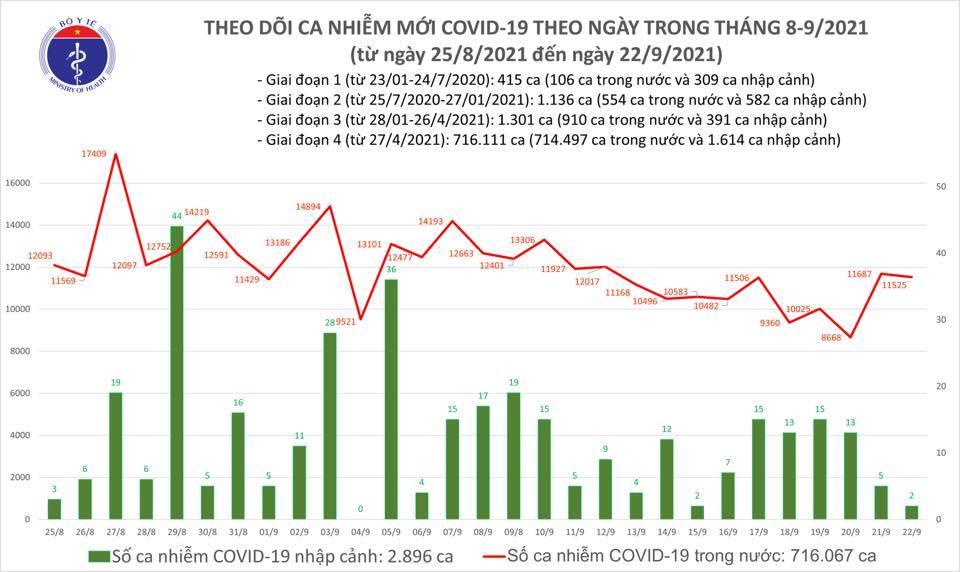 Ngày 22/9 thêm 11.527 ca Covid-19, TP.HCM giảm 1.086 trường hợp