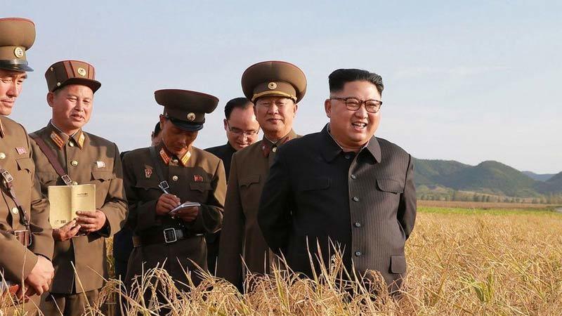 Lý do Triều Tiên huy động tổng lực thu hoạch gấp nông sản