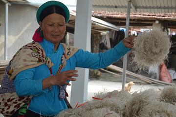 OCCP nâng chất nông sản Quảng Ninh