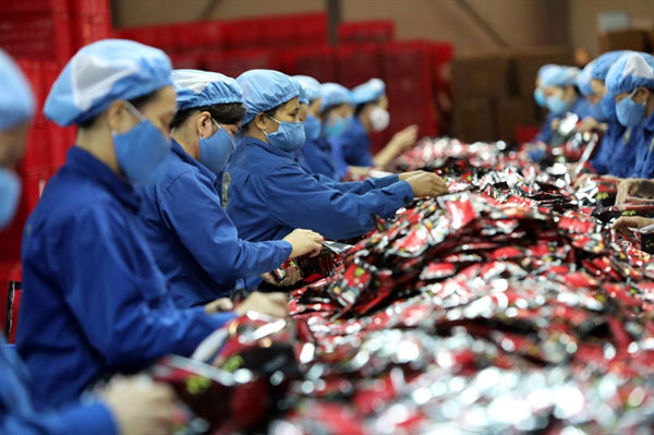 Productive and diversified private sector key to Vietnam's economic transformation