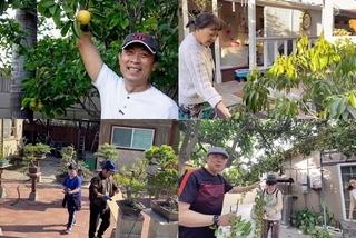 Vườn cây hàng trăm m2 của NSƯT Bảo Quốc, Hương Lan ở Mỹ