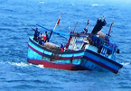 Tàu cá Bình Định bị tàu hàng đâm chìm, 2 ngư dân mất tích