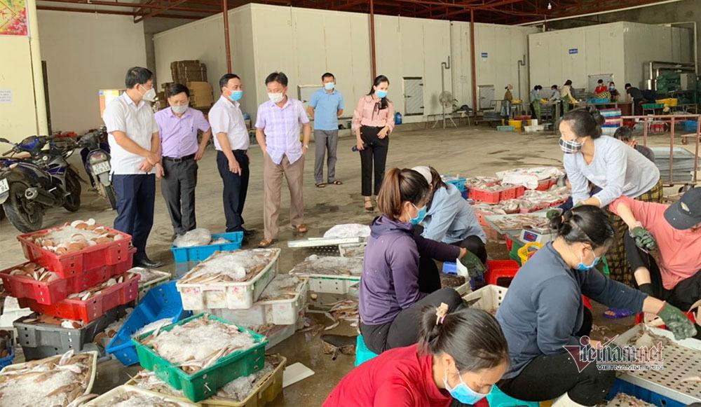 Gửi văn bản đi cả nước kêu gọi giải cứu hàng nghìn tấn hải sản