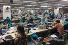 Mất việc do Covid-19 được hưởng cao nhất 3,3 triệu từ Quỹ bảo hiểm thất nghiệp