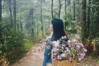 Bỏ việc ổn định, cô gái trẻ về quê trồng hoa, sống cuộc đời mình thích