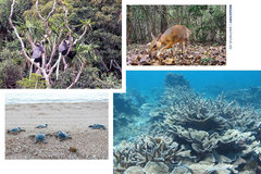 Recognition more than a title forbiosphere reserves