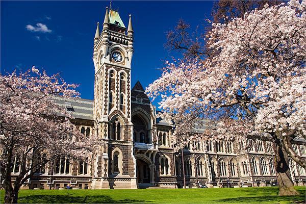 Lợi thế du học ngành Y tại New Zealand