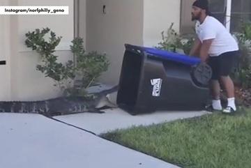 Xem cựu binh Mỹ bắt cá sấu chỉ bằng thùng rác