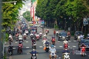 Biến chủng Delta và sức chống chịu của Việt Nam