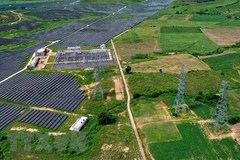 Millions of US dollars poured into green growth projects