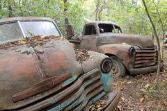 Đi dạo giữa rừng và bắt gặp nghĩa địa ô tô Chevrolet cổ điển
