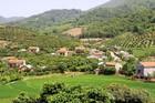 Bắc Giang nỗ lực đảm bảo an sinh xã hội tại vùng đồng bào dân tộc thiểu số và miền núi