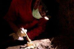Hài cốt cô gái 7.000 năm tuổi 'viết lại' cách người xưa đi khắp thế giới