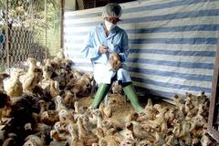 TP Sông Công tiêm 187 nghìn liều vắc xin cúm gia cầm trong đợt 2/2021