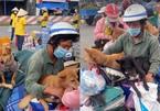 Vụ tiêu hủy đàn chó 15 con: Trưởng trạm y tế xã xin nghỉ việc