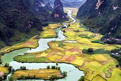 Lên Hà Giang, lo không qua nổi Tuyên Quang, sợ nửa đường hết hạn PCR