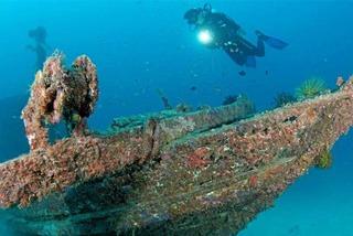 Đi 'hái' nấm, ngắm cá lạ trong 'những ngôi mộ dưới đáy biển'