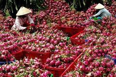 Quy định mới về nông sản Việt Nam vào Trung Quốc