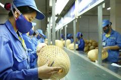 Đi tìm dáng hình doanh nghiệp nhỏ Việt Nam