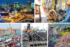 IMF forecasts Vietnam's GDP to see highest growth in ASEAN 5 group