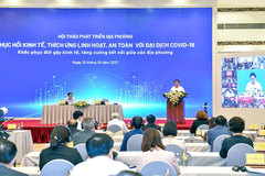 Next six months vital for economic recovery: experts