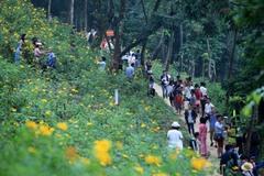 Xây dựng vùng xanh du lịch: Giải pháp giúp ngành du lịch Hà Nội phục hồi an toàn
