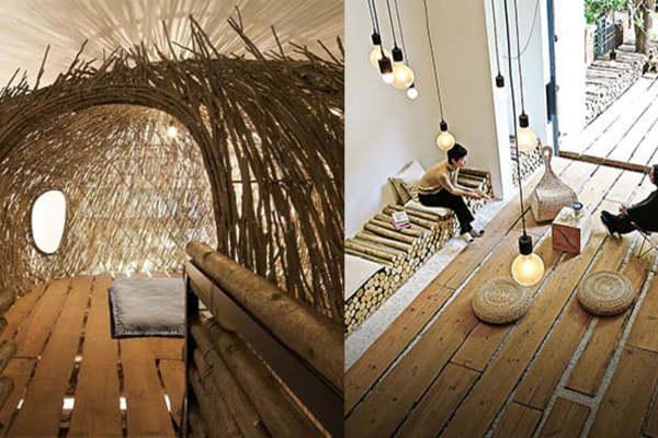 """Xây cầu gỗ, dựng """"tổ chim"""", đưa cả thiên nhiên vào nhà để thực hiện ước mơ"""