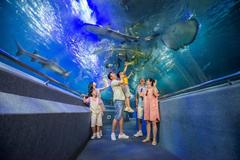 Thủy cung VinWonders  - 'Cánh cổng' bước vào thế giới đại dương kỳ bí
