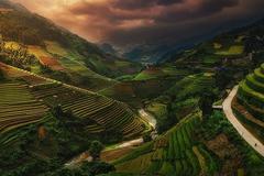 Cảnh ruộng bậc thang Việt Nam vào top ảnh xuất sắc trong cuộc thi quốc tế
