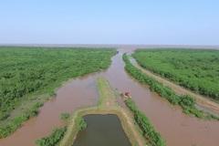 Thái Bình quyết tâm thực hiện hiệu quả Đề án Bảo vệ và phát triển rừng ven biển