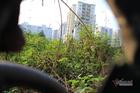 Bên trong khu đất vàng Mỹ Đình sắp 'nhồi' thêm loạt chung cư, nhà liền kề