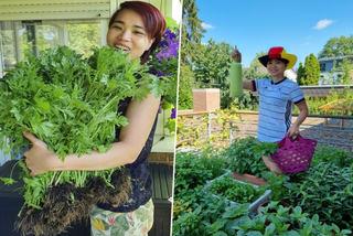 Vườn rau 20 loại trên ban công của gia đình Việt ở Đức